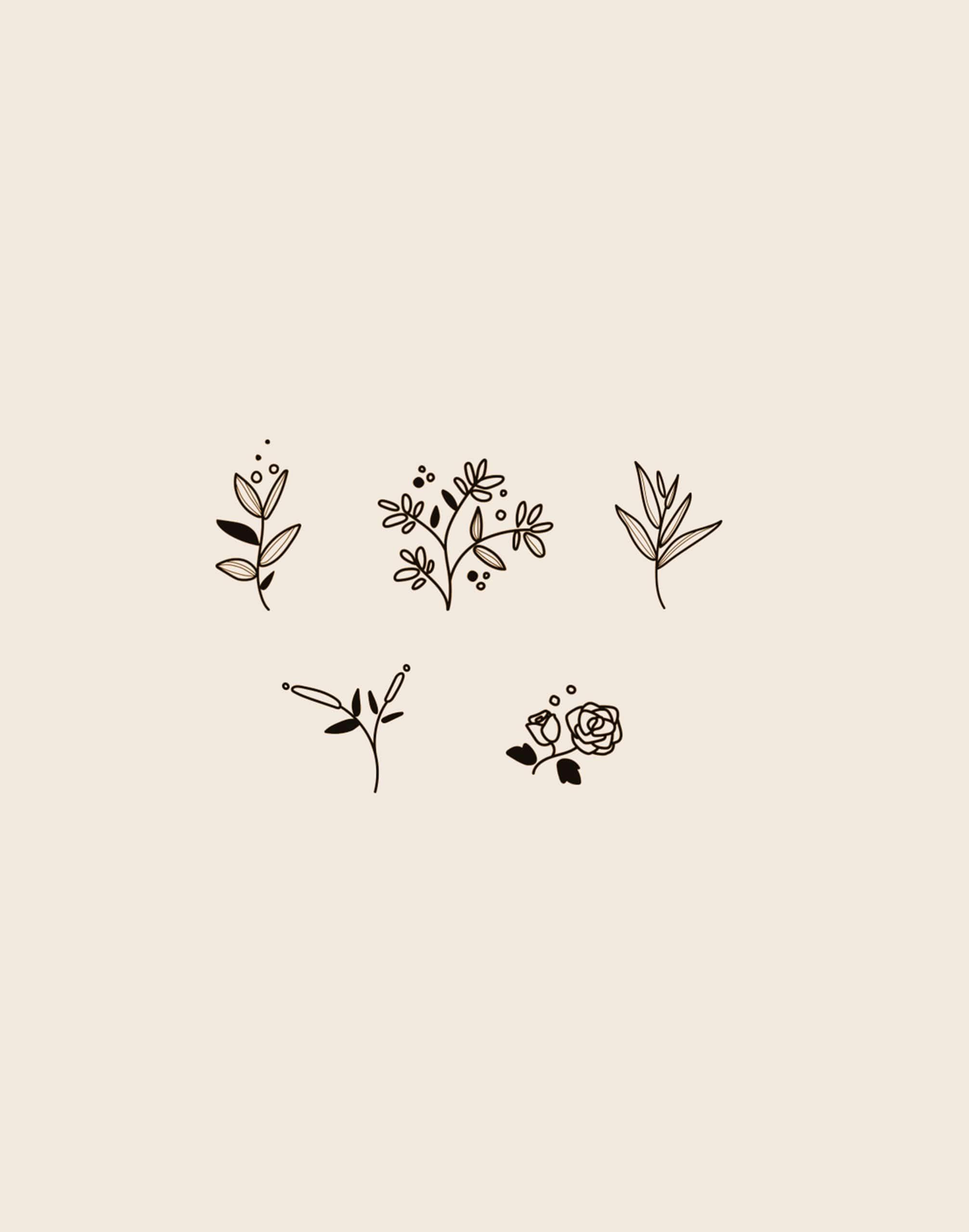 dessin de cinq pictogrammes de fleurs pour l'artisan fleuriste Flor