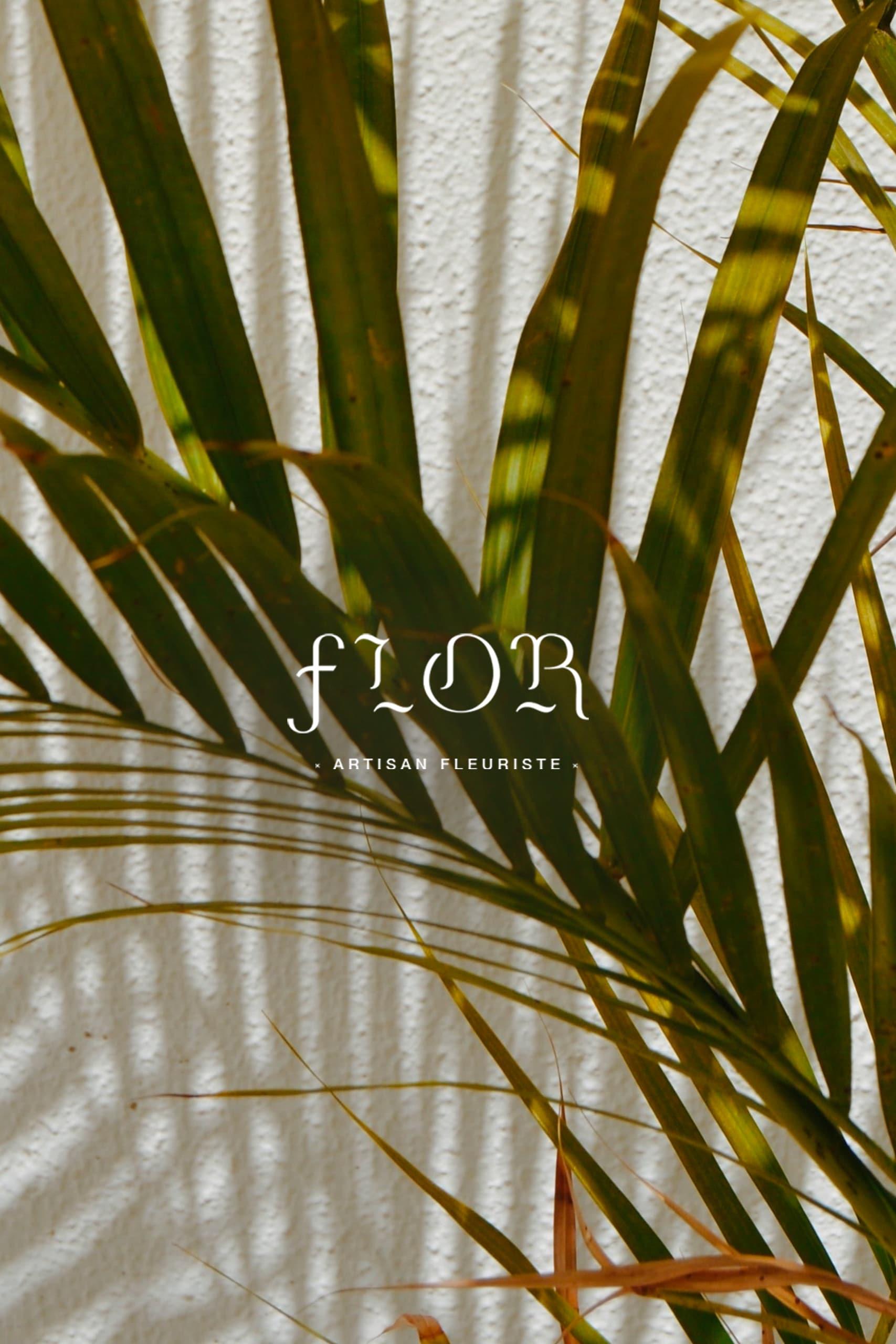 Logo blanc du fleuriste Flor en arrière plan on retrouve une photo de feuille de palmier